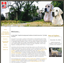 English Goldens in North America